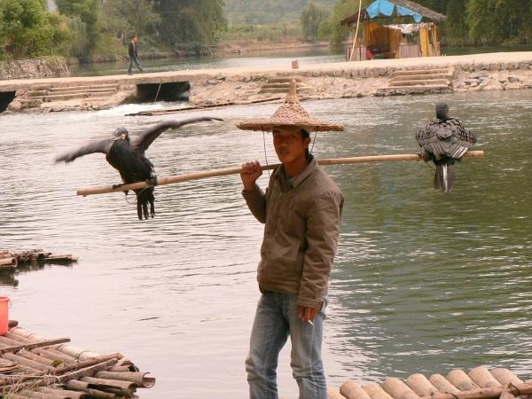 Cormorant fisherman, Guilin, Guangxi Province, China