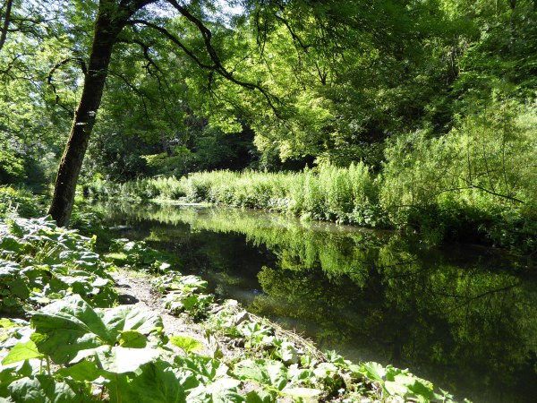 Chee Dale, Derbyshire, England, August 2015