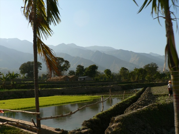 Ailao Mountains across sub-tropical rice fields Jan 2010