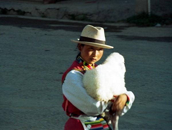 Zhongdian 2002